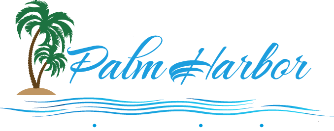 Palm Harbor Chamber of Commerce Welcomes Online Presence Manager