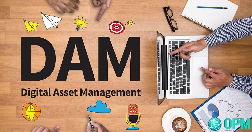 digital asset manager