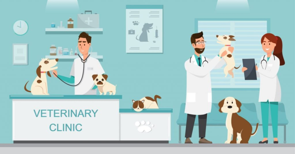 SEO For Veterinarians